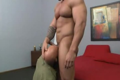 ZEB plowing ATLAS!!!
