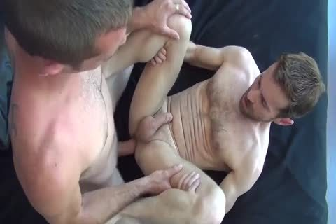 dirty And Hung stud-horses plow bare