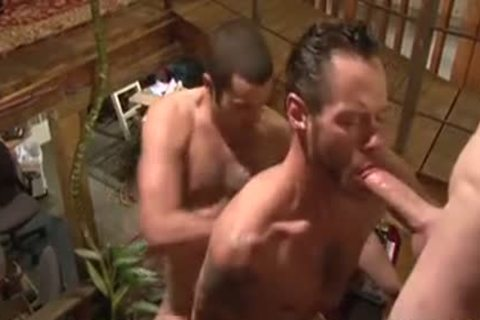 pounding Around The abode - Damon Doggs sperm Factory