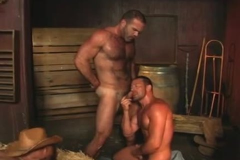 When Three homo Pornstars plow jointly!