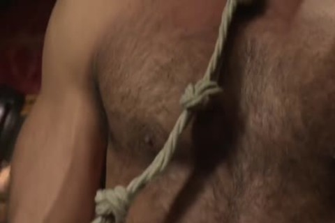 Muscle-tied Hunk fastened Up And Teased