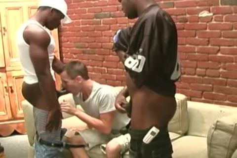 black Thugs Sharing The arse Of A Whiteboi
