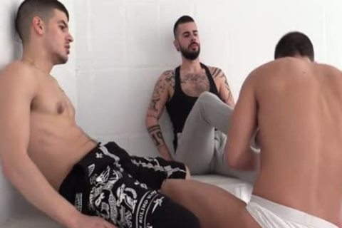 Alpha Males Dominate In This Scene