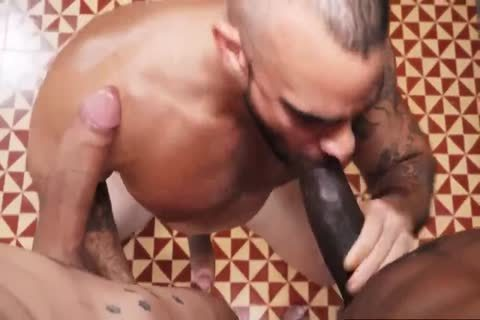 White gay butt hammered By BBC And BWC In unprotected - GayTV